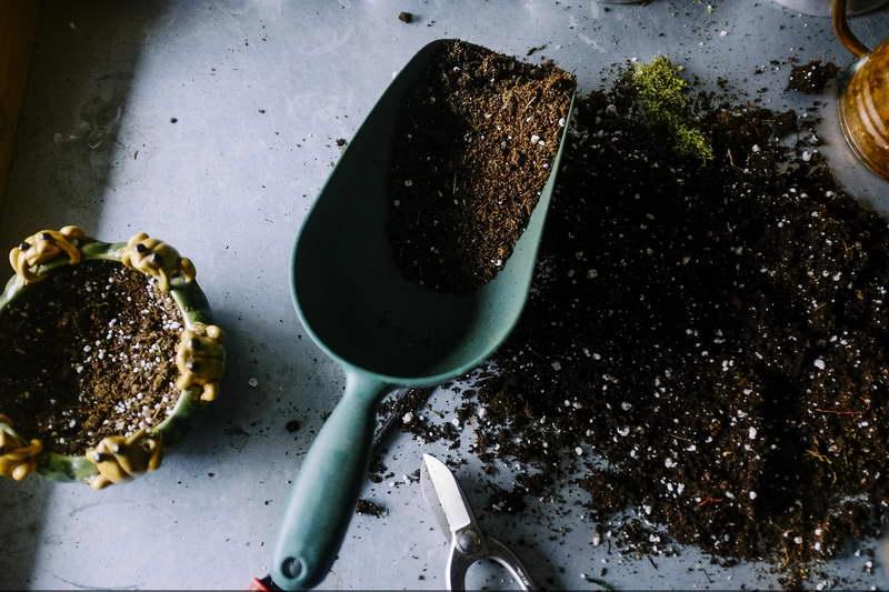 Как использовать перлит для комнатных растений правильно