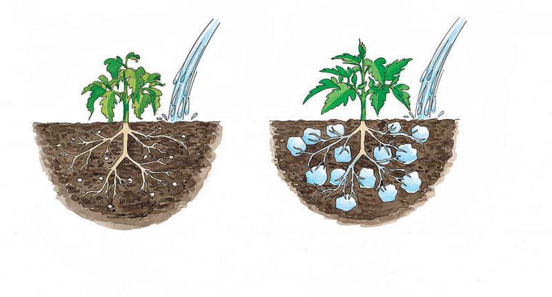 Как использовать при посадке гидрогель в огороде