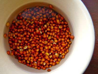 Как правильно замачивать семена редиса