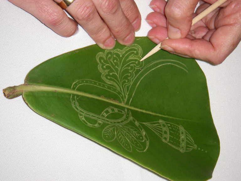 Как рисовать на листьях клузии фото