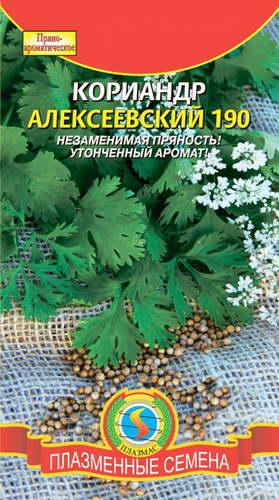 Кориандр Алексеевский фото