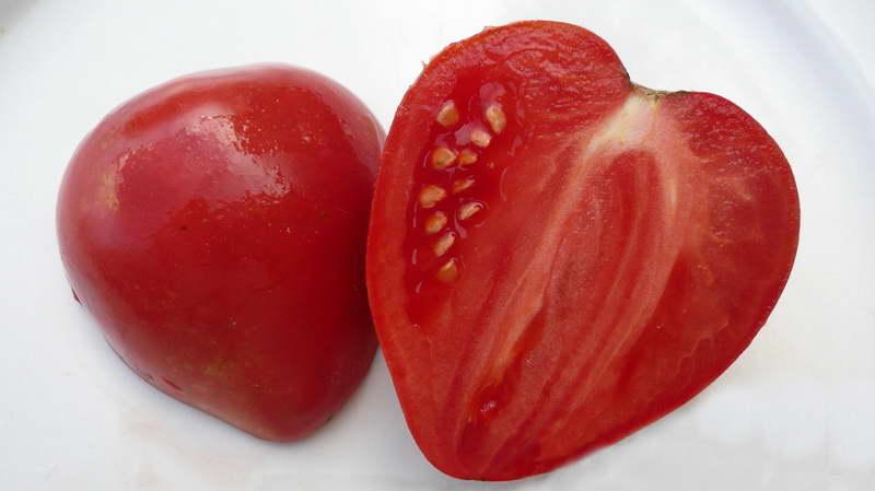 Мазарини томат описание и фото плодов в разрезе