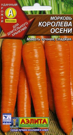 Морковь Королева Осени фото