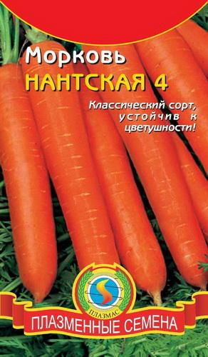 Морковь Нантская фото