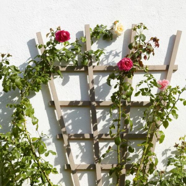 Опора для плетистой розы своими руками фото