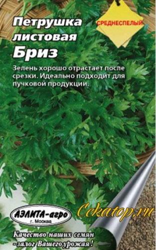 Петруша листовая бриз фото