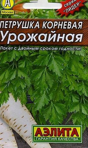Петрушка корневая урожайная фото
