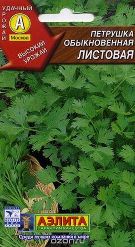 Петрушка обыкновенная листовая фото