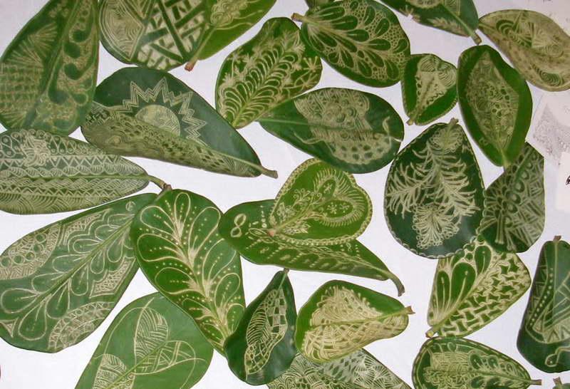 Поделки из листьев клузии фото