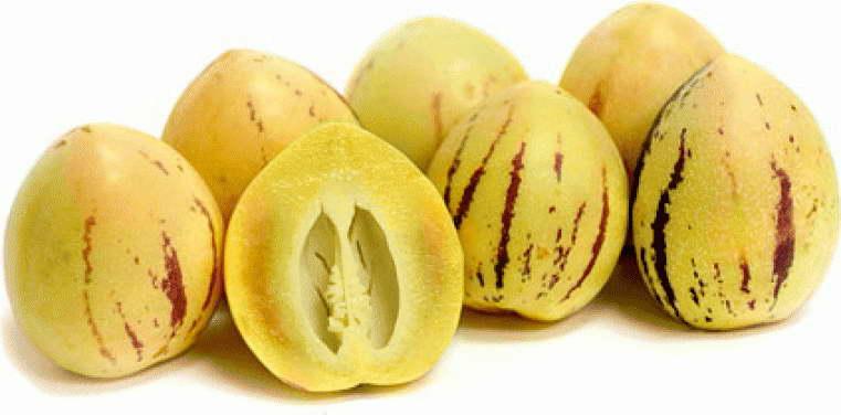 Польза плодов пепино