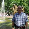 Томат Олеся отзывы фото
